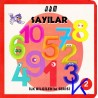 Sayılar - Ilk Bilgilerim Serisi 2 - Sert karton kitap