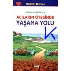 Peygamberimizden Acıların Ötesinde Yaşama Yolu - Mehmet Dikmen