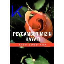 Peygamberimizin Hayatı - Ahmet Cevdet Paşa