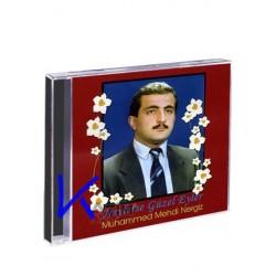 Neylerse Güzel Eyler - Muhammed Mehdi Nergiz