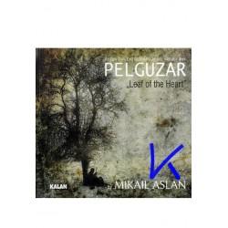 Pelguzar - Mikail Aslan