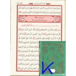 Kur'an-ı Kerim, Cep Büyük Boy, Ayfa - kolay okunan, bilgisayar hatlı Kuran
