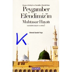 Peygamber Efendimiz'in Muhtasar Hayatı - Ahmed Cevdet Paşa