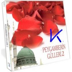Peygamberin Gülleri 2 - çocuk ilahileri